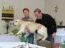 Erste Hilfe beim Hund 2013
